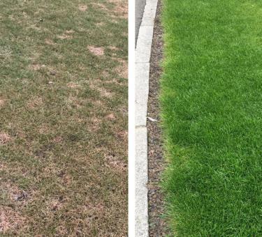 HECHT Gartentechnik