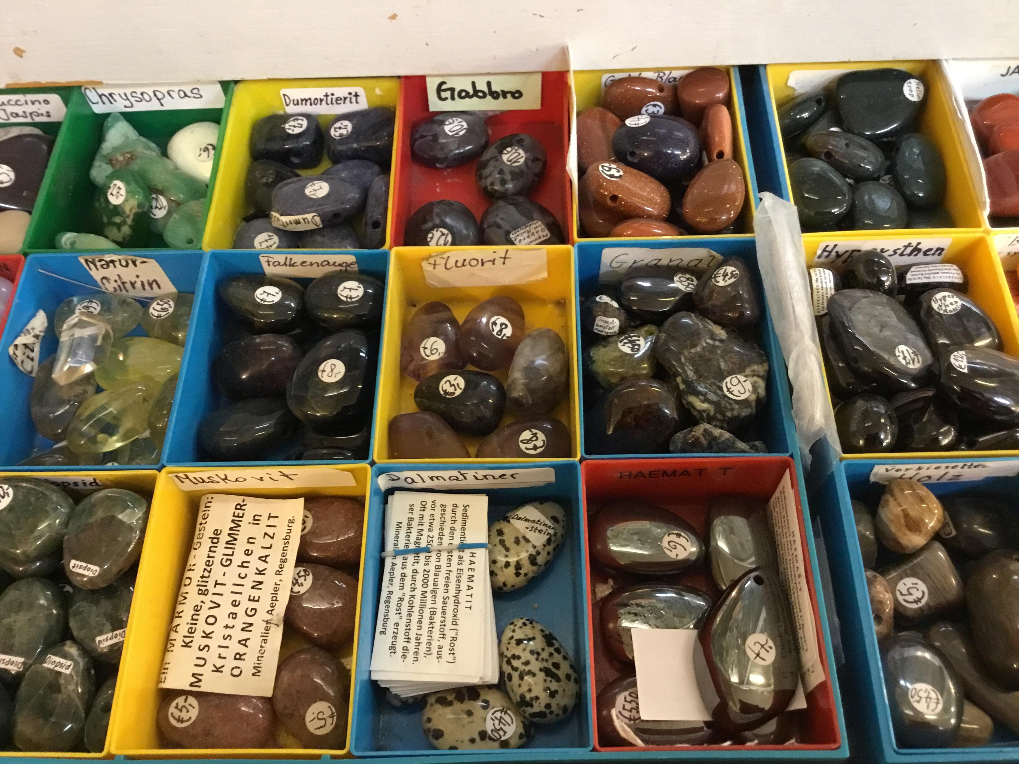 muscheln bei mineralien fossilien aepler reinhardt in. Black Bedroom Furniture Sets. Home Design Ideas