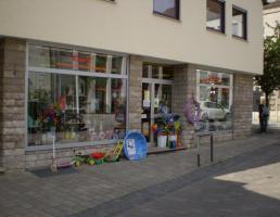 Elektro-Spielwaren Klein in Schnaittach