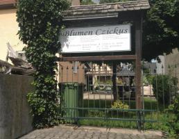 Garten & Landschaftsbau Czickus in Ottensoos