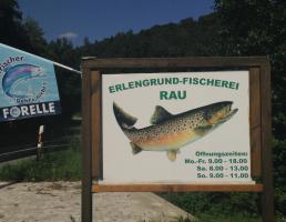 Erlengrundfischerei in Simmelsdorf