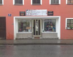 Skandi Dog in Regensburg