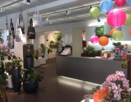 Blumen Speth GmbH in Regensburg