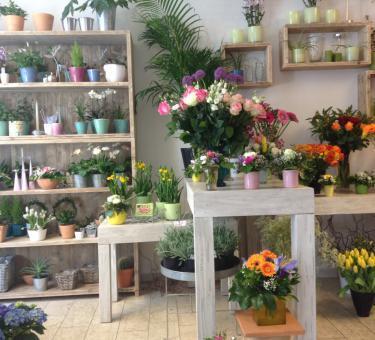 Die BlumenWahl