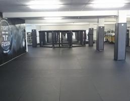 Fight Fusion in Regensburg