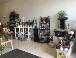 Blumenbinderei Marion Trede in Regensburg