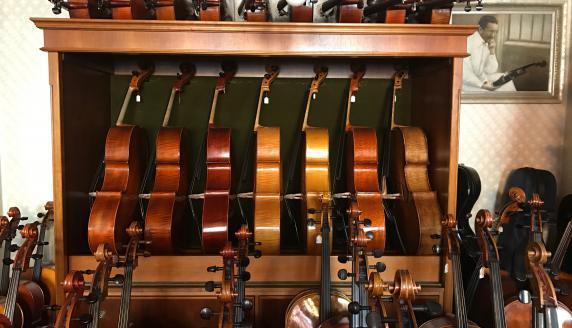 Geigenbau Goldfuss in Regensburg Impression