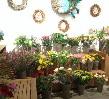 Zeit für Blumen