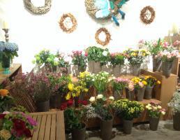 Zeit für Blumen in Landshut